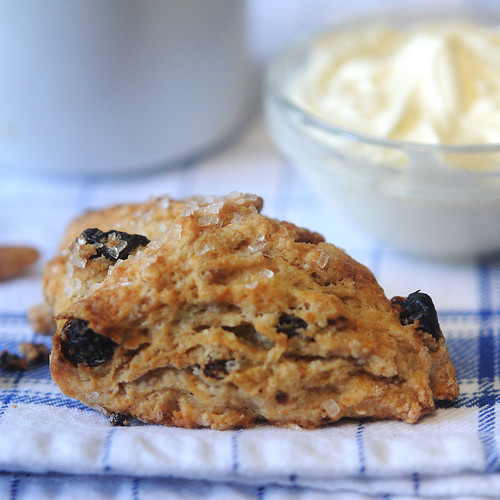 Cinnamon Raisin Biscuits_square