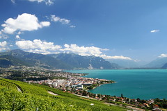 Vevey aux Carabes (MB*photo) Tags: summer switzerland suisse turquoise lac vineyards vin t lman vignoble nestl vevey lakegeneva vaud filtre lavaux waadt chardonne polarisant pralpes wwwifmbch marcbaertsch