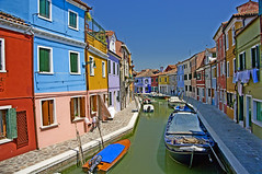 Esclatants colors / Explosion of colours (SBA73) Tags: blue venice italy water colors azul boat canal agua wasser barca italia colours village pueblo explosion lagoon venetian laguna blau venise venecia venezia azzurro venedig aigua burano bot veneto poble serenissima llacuna venècia supershot mywinners venezsia 100commentgroup mygearandme mygearandmepremium mygearandmebronze ヴェネツィ