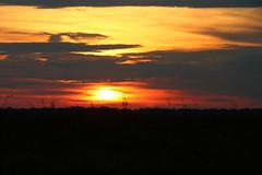 Rurrenabaque - Amazonia Bolivia