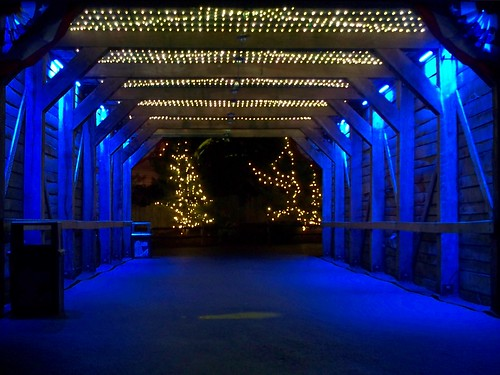 Cedar Point - Starlight Experience Tunnel