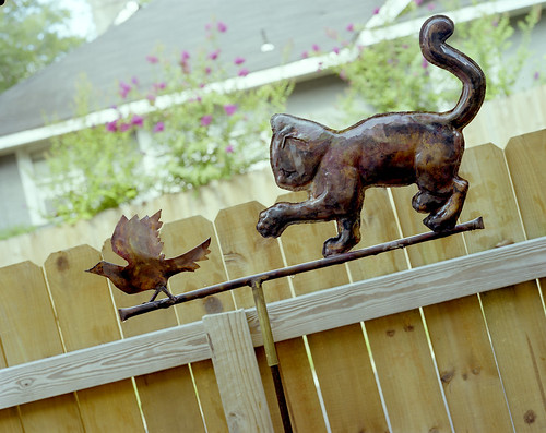 Copper weathervane