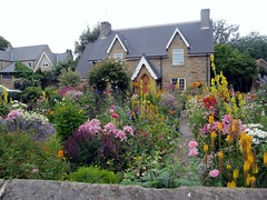 English Cottage Garden (janet7r) Tags: flowers cottagegarden
