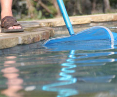 Skimming the pool surface