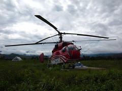 Kamov 32A11BC (Indo Pilot) Tags: indonesia flying aircraft aviation helicopter 365 papua rotor kamov 9813 3652010 32a11bc hl9470 pkjtc