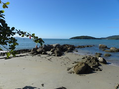 DSCN0934 (Blog do Papa-Siri III) Tags: praia sc portobelo