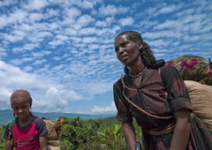 Hard life of the Wollo women, Ethiopia (Eric Lafforgue) Tags: work kid women culture tribal tribes tradition tribe ethnic femmes tribo ethnology tribu 714 thiopien etiopia ethiopie etiopa wollo  etiopija ethnie ethiopi  etiopien etipia  etiyopya