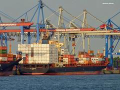 ST-CERGUE Terminal Burchardkai (Reinhard_Schuldt ( Brigitte Schuldt)) Tags: ship ships terminal cargo container schiff schiffe