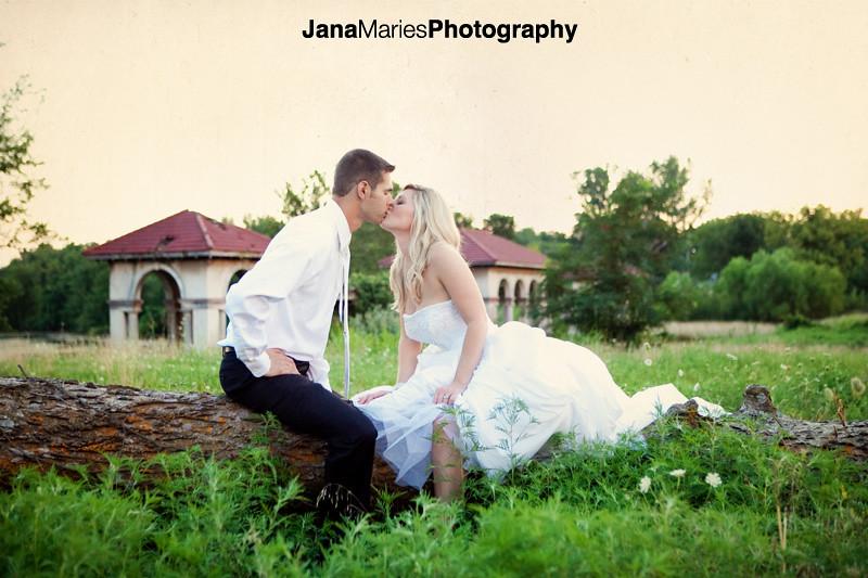 Brown bridal blog016
