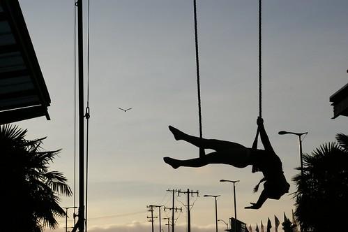 Trapeze Silhouette 4