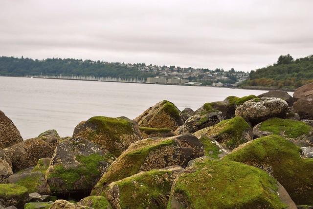 Seattle 158