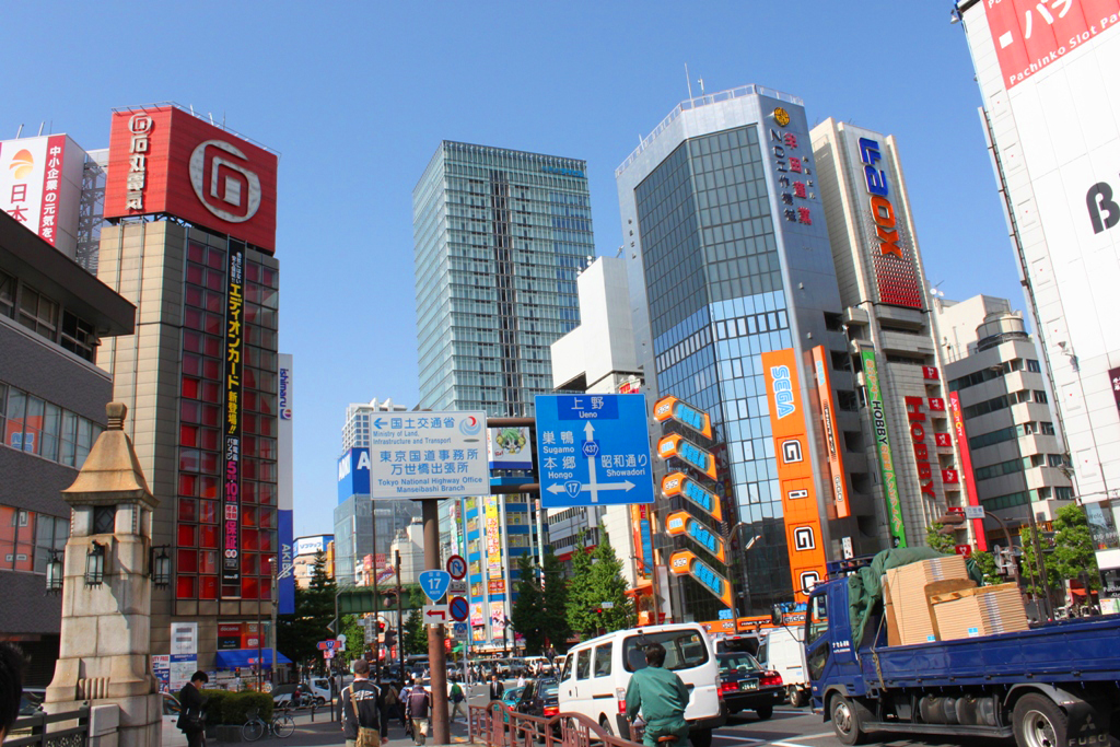 The art of the walk for gastronome in Kanda (53)