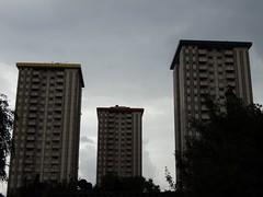 Ampthill Square from Harrington Street (J@ck!) Tags: london towerblock nw1 socialhousing londonboroughofcamden ampthillsquareestate