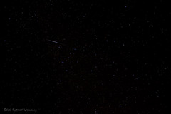 2010 Perseids (Robert m Williams) Tags: sky ontario stars debris astrophotography meteor kenilworth meteorshower persieds swifttuttle