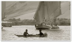 Egypt (Gwe_n) Tags: children barca ngc egypt egipto velero mygearandme