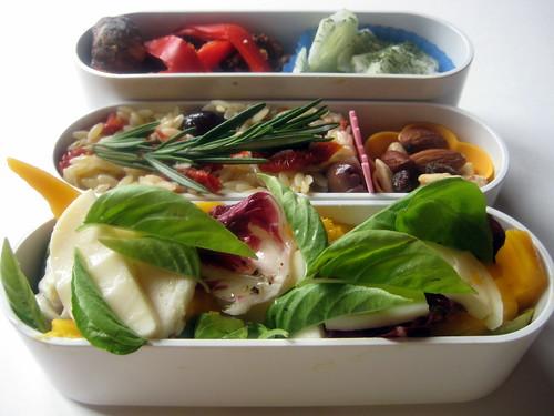 8-18-10 Mango Caprese and Lamb Kebab