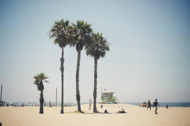 L.A 06