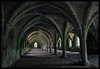 Fountains Abbey Cellerium (davep90) Tags: world tower heritage church abbey architecture nikon yorkshire north creative royal chapel national trust fountains moment cloisters nidderdale studley d90 creativemoment 18105vr cellerium davep90
