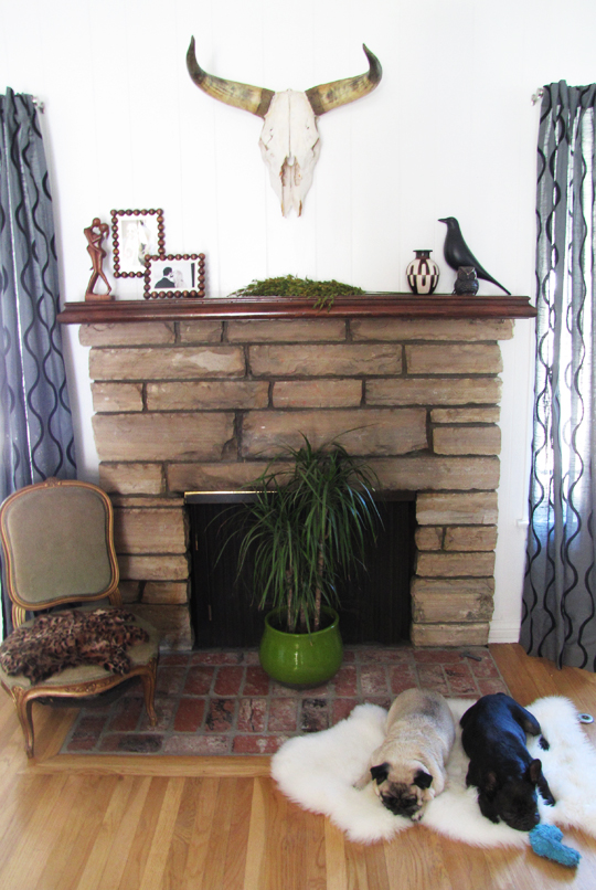 fireplace decor ideas+mantel+cow skull horns