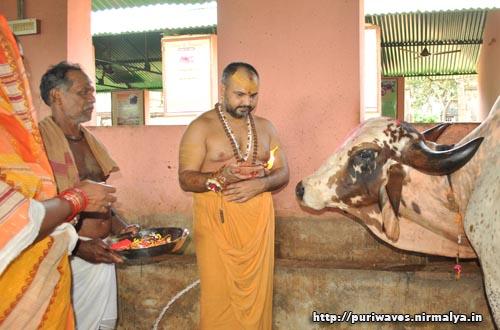 Gopujan at Gobardhan Pitha Puri