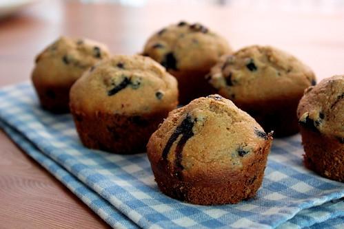 whole wheat wild blueberry muffins