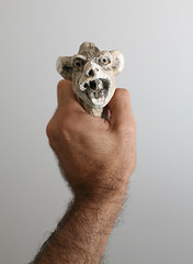 gargoyle 5 (jetheriot) Tags: head gargoyle chimera