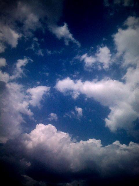 8/25/10 iPhone photo