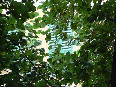 volets verts.jpg