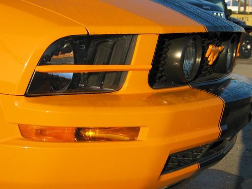 2007 Mustange