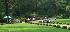 DPRK Moranbong Park(8) (kwramm) Tags: park northkorea pyongyang dprk moranbong