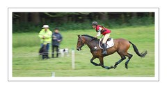cross country (shugd3) Tags: horses d50 scotland perthshire blairathol