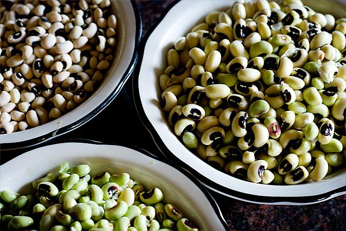 harvested black eyed peas