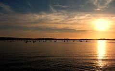 (Evie Smith) Tags: sunset england fujifilm swanage top20sunsetsofourhearts