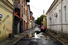 Posle oluje (Weingarten) Tags: serbia srbija serbie serbien negotin
