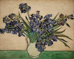 Irises (donsutherland1) Tags: flowers ny newyork art dutch painting soft purple blossoms 19thcentury violet harmony oil bloom met soe vangogh metropolitanmuseum 1890 irises metropolitanmuseumofart metmuseum vincentvangogh oiloncanvas topshots flickraward forstudents forschools violetirises flickrunitedaward