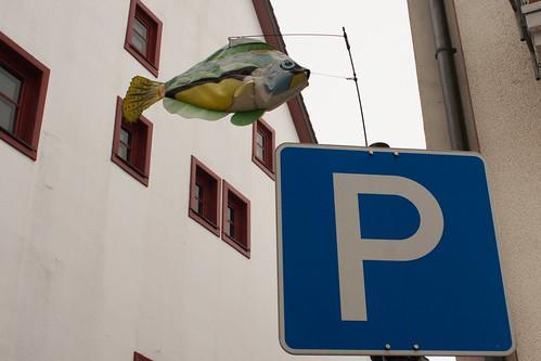Parkfisch