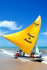 Jangada (**soniatravel**) Tags: brazil praia beach brasil jaune boat nikon barca barco bresil fortaleza vela bateau voile ceara plage spiaggia brasile passeio nordeste jangada canoaquebrada d3000