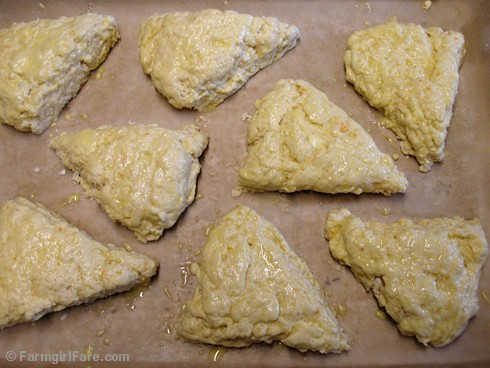 Meyer Lemon Scones 4