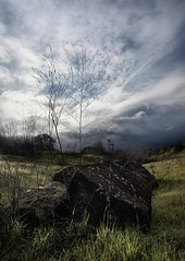 A Momentary Reprieve (Mahnie) Tags: storm northerncalifornia landscape weeds rocks cloudy ominous wideangle walnutcreek lowdown greengrass canon1740l shellridgeopenspace canon5dmarkii