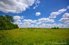 Beautiful Plains (mswan777) Tags: field plain prairie grass tree travel sky cloud marion ohio killdeer trail hiking summer nikon d5100 sigma 1020mm landscape scenic expanse horizon