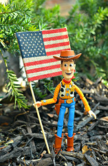 Happy Independence Day, America! (air_dan) Tags: woody revoltech independence day