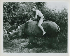 7000-2063 (AliceJapan ʕ •ᴥ•ʔ) Tags: johnny mgm 1934 weissmuller tarzanandhismate johnnyweissmuller