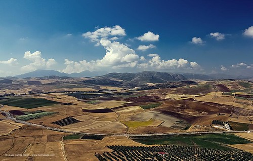 Campos de Andalucia - Andalusian Fields