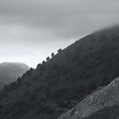 (maryaben) Tags: asturias sierradelcuera maryaben