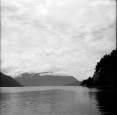 Porteau Cove (II) (Michael Kalus) Tags: blackandwhite bw white canada black 6x6 june blackwhite bc cove hc110 squareformat 2010 porteaucove porteau kodakhc110 epsonv700 autaut zeissikon52316 adoxchs50art