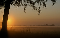 Fog 'N Sun (JustJan) Tags: sun mist fog pentax rise polder k7 aarlanderveen fogmistaarlanderveenpoldersun