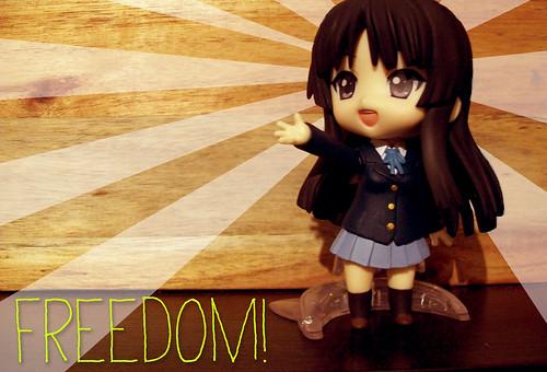 Mio Freedom