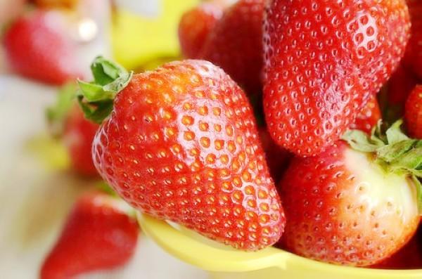 fruitandcharacter3
