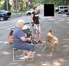 GoSniff, Juni 2010 (Cave Cani) Tags: seminar hunde hundeschule suchspiel hundetraining hundesenior hundeerziehung nasenspiel nasenwelt gosniff nasenarbeit sucharbeit hundetrainingteamarbeit