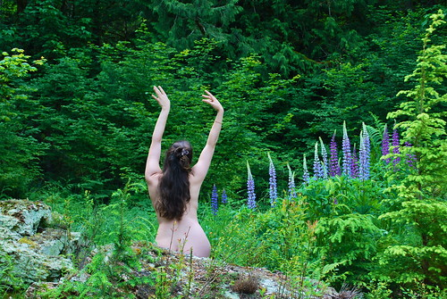 Swaying in the lupines